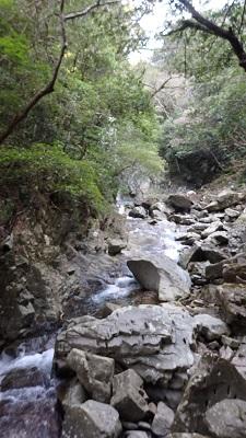 水音スケッチ 沖縄本島の水音風景
