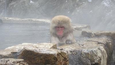 水音スケッチ 地獄谷温泉と周辺の水風景