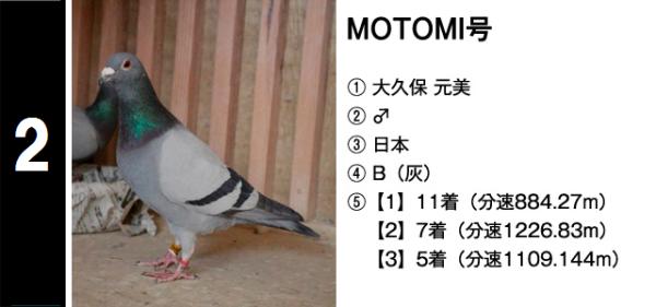 鳩 new 02 MOTOMI号