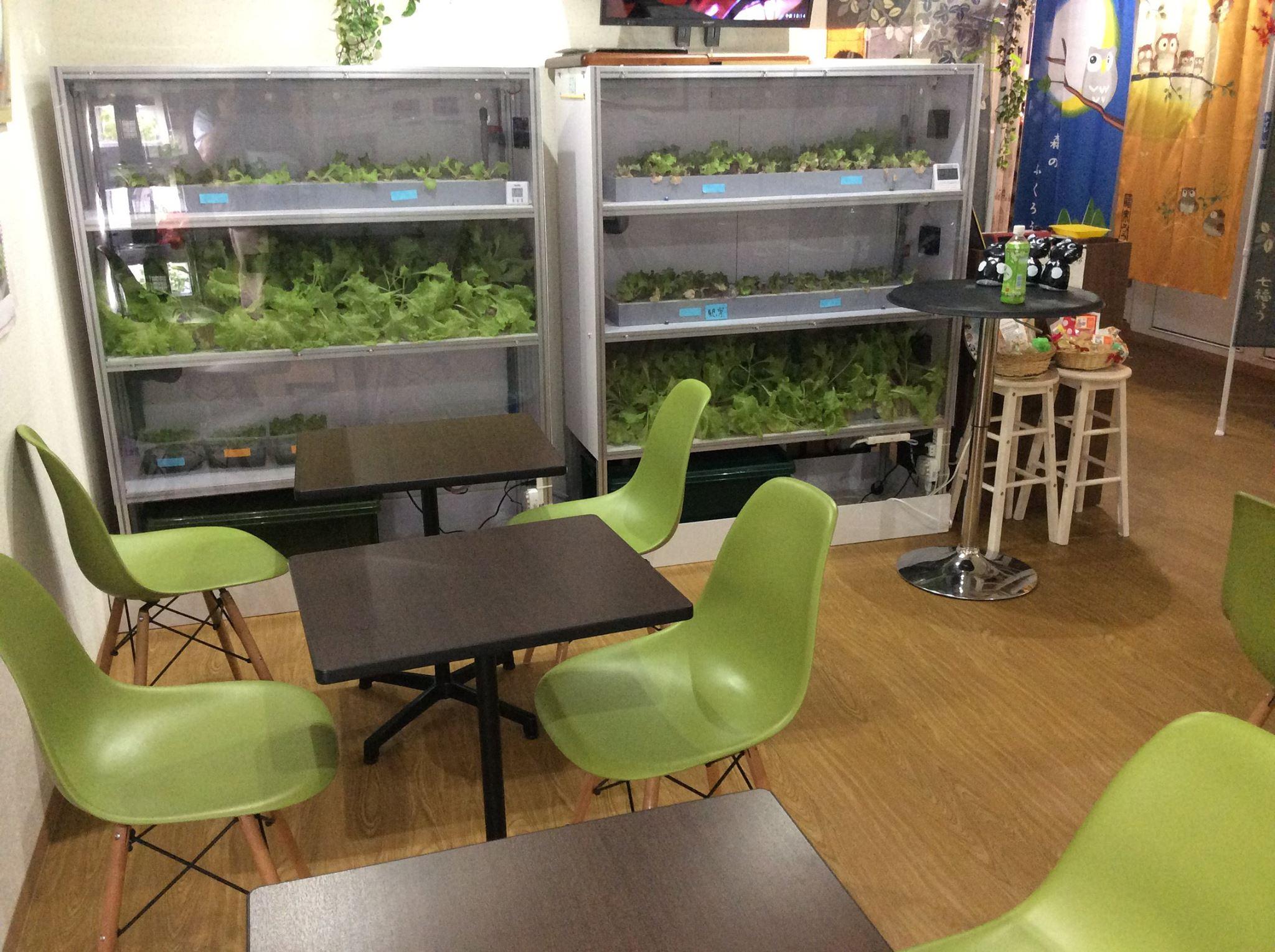 葛飾区新小岩の「グリーンカフェ」店内