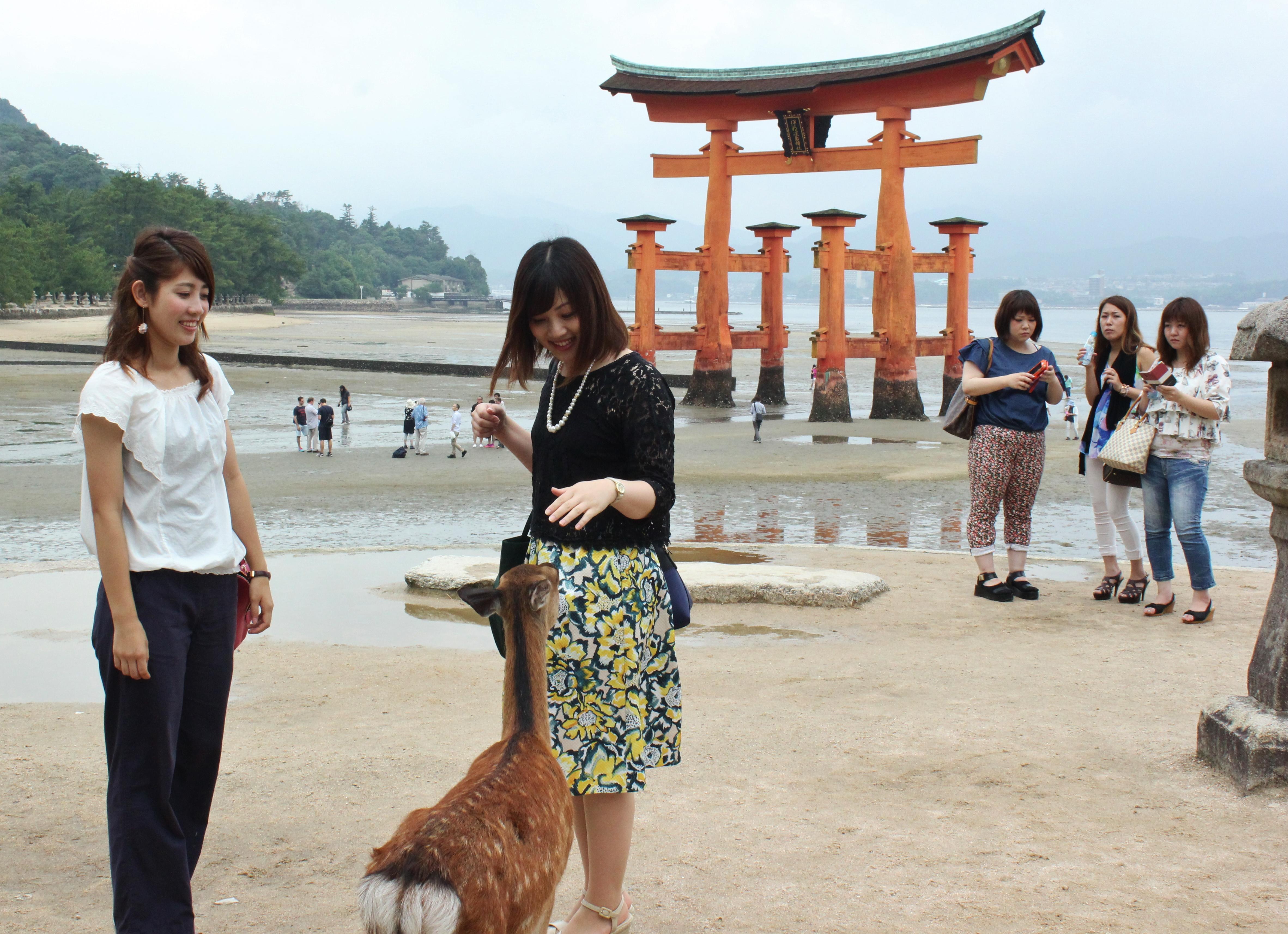 宮島・厳島神社の大鳥居。潮が引くと鳥居を支える柱のそばまで歩いて行くことができる