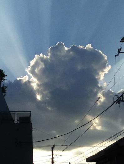 駒田健吾の画像 p1_10