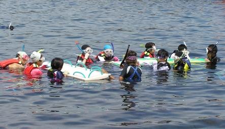 今年はみんなで海へ潜りに行きました