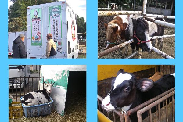 DairyLife_20170101_01
