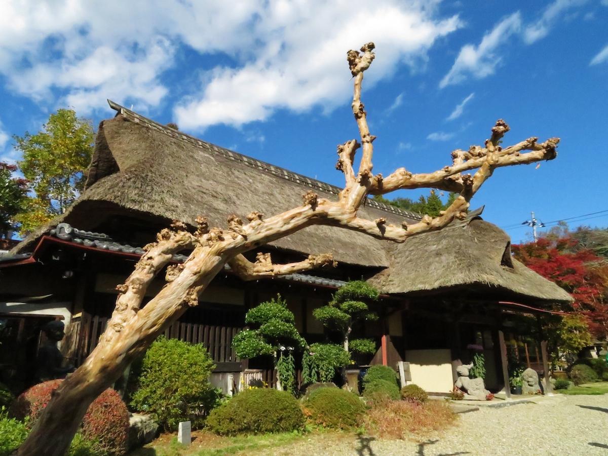 笠間日動美術館の分館、春風萬里荘。陶芸家でもあった北大路魯山人の住居を移築して、作品などを展示している