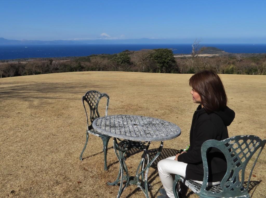 国際優秀つばき園のひとつに認定された椿花ガーデンからは伊豆半島と富士山を一望