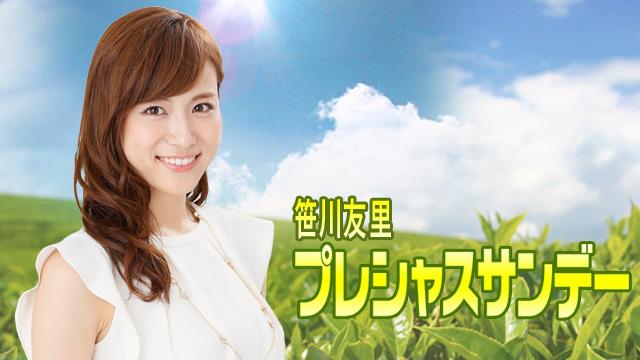 笹川友里の画像 p1_33