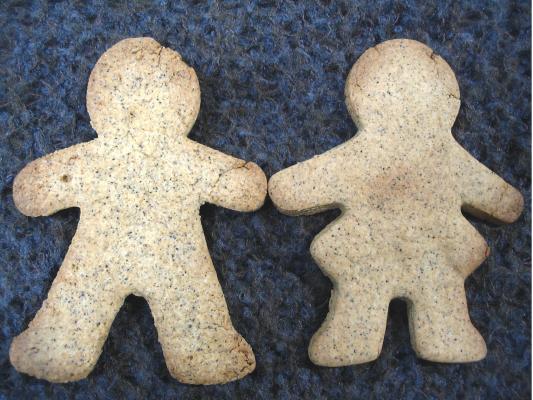 ごまクッキー(きのこ習慣)