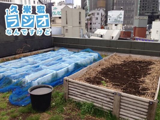 ビルの屋上に畑