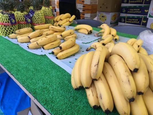 ▲日本に初めて輸入されたバナナ「北蕉バナナ」