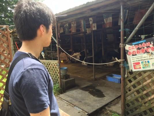 小泉牧場_170606_0013