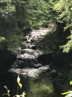 この流れの中に亀岩があります!見つかりますか??